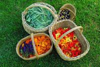 Kvepiantis derlius