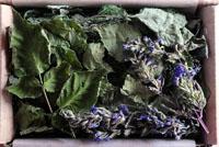 "Tea ""Labanor Forest"""