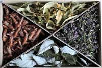 "Herbal set ""Breathe easily"""
