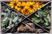 "Herbal set ""Sun blossom"""